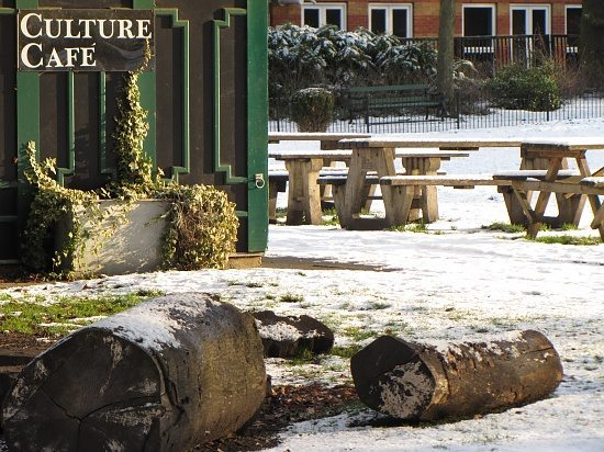 not-a-snow-culture1
