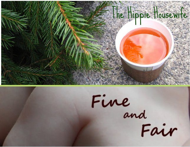 Friday Features: 'Fine And Fair'  And 'The Hippie Housewife'