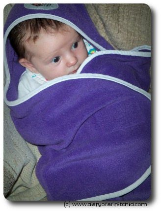 Bug In A Rug Babyrug Review