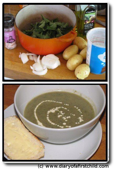 Festival Of Food - Nutritious Nettle Soup