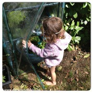 Getting Into Gardening