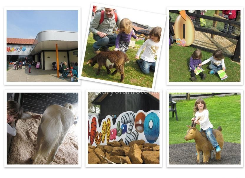 Whipsnade Zoo, Luton, Bedfordshire