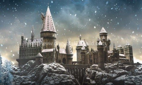 Kids at christmas hogwarts
