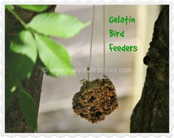 Gelatin Bird Feeders For The Garden (With Recipe)
