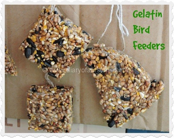 Gelatin Bird Feeders
