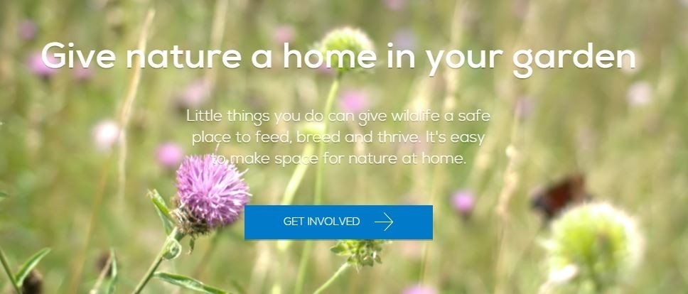 Create A Home For Nature With A Free Pack From The RSPB