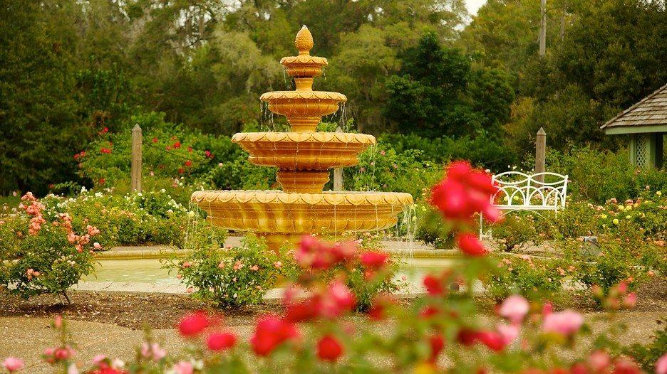 Harry-P-Leu-Gardens-22724