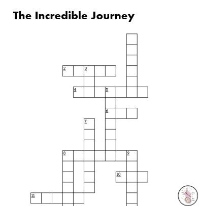 The Incredible Journey Crossword